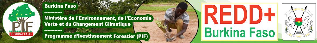 Programme d'investissement Forestier